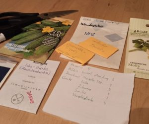 Weniger Stress beim Gemüse vorziehen