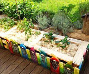 Das Große Tomatenrauspflanzen, oder: Endlich wieder Platz im Haus!